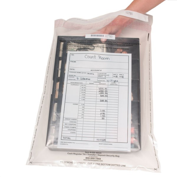16W x 20H Clear Register Till Bags