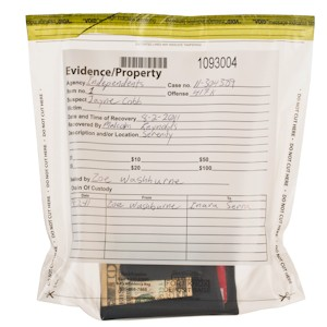 Clear Evidence Bags - 8W x 8-1/2H x 3D - 100/BX